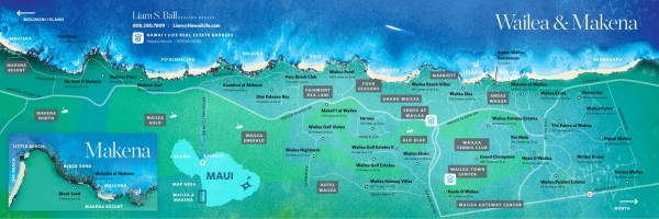 Wailea Real Estate Map