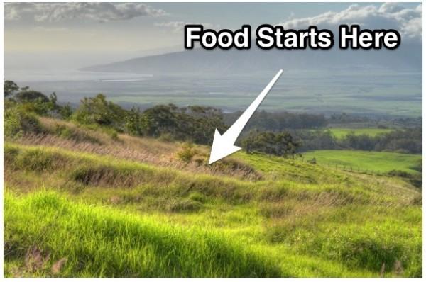 Buying_vacant_land_in_Hawaii__30_Year_Land_Loans___Hawaii_Life