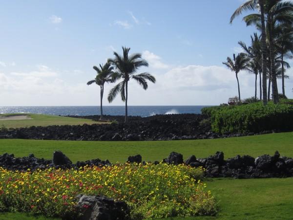 Halii Kai 12C Ocean view