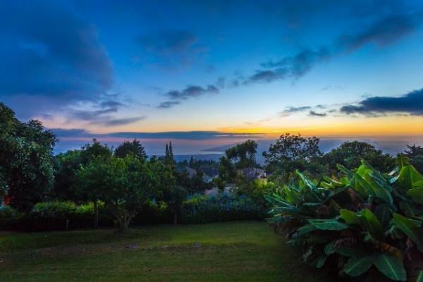 15030 Haleakala Hwy yard view