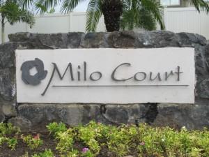 Milo-Court-for-DMI-website