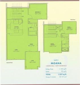 P6-Moana