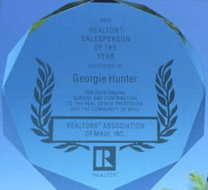 Realtor Salesperson of the Year 2015 award - Maui HI