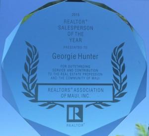 Realtor Salesperson of the Year 2015 award - Maui HI