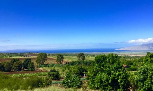 Kula view