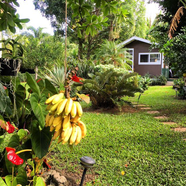 garden studio at 435 Ho'olawa Rd.