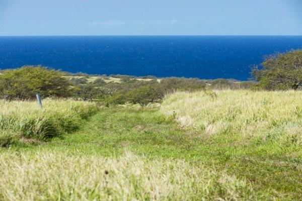 Ocean view 20 acres Ranch at Puakea for sale