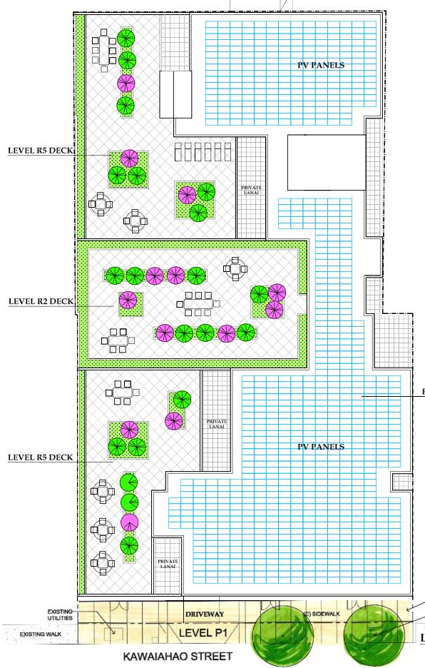 803 Waimanu, Landscape Plan