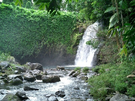 Waterfall on orchard property
