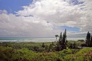 Analio Ocean View