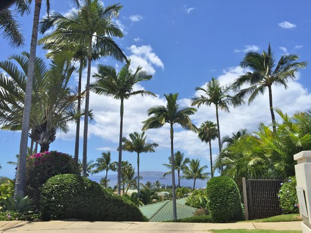 Wailea Golf Estates homes