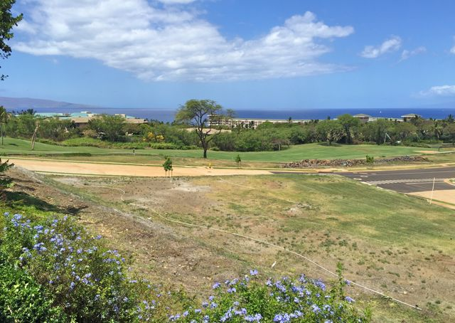 Wailea Golf Estates II - lot 16