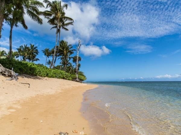 Anini-Beach.jpg_800x600_2283322