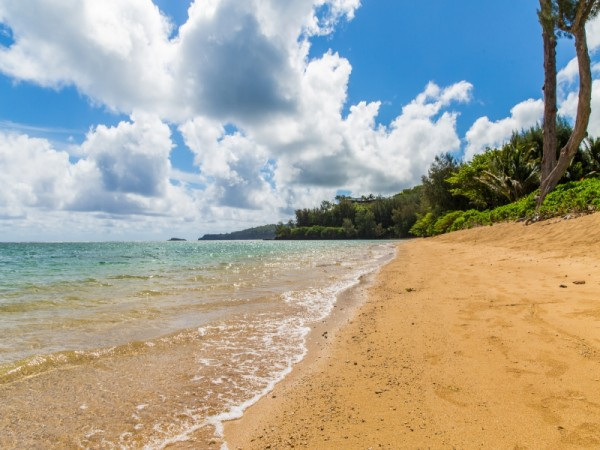 Beach.jpg_800x600_2283340