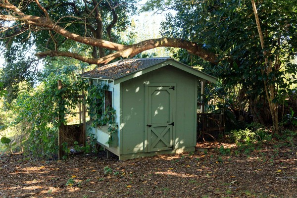 Chicken Coop on 3 acre property