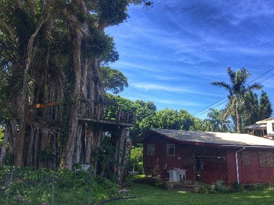 One of lowest price homes for sale in Kohala