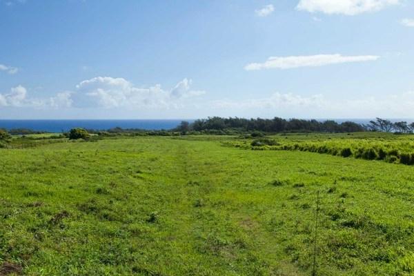6 acre Lot for sale Kapanaia