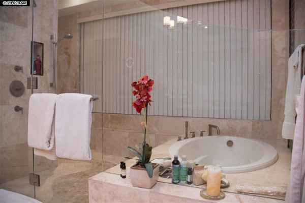 Spa-like master bath with double shower and soaking tub