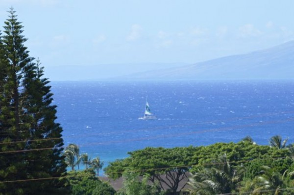 Wailele Ride Sales under way! The new lux condo development in Napili had 2 pending sales in July.