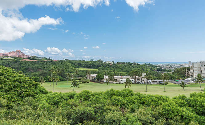 1317B Moanalualani Way-small-008-17-DSC 3475-666x406-72dpi