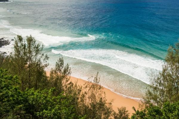 906217_Ocean-View_high