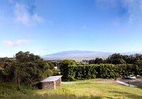 Maune Kea View