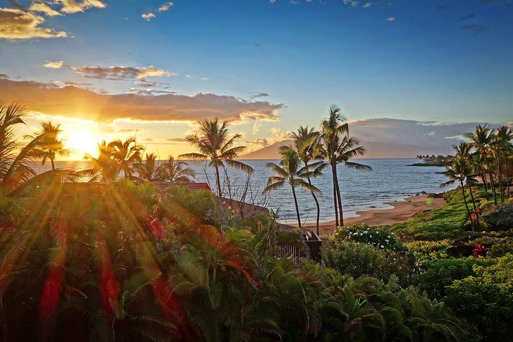 Makena Surf View