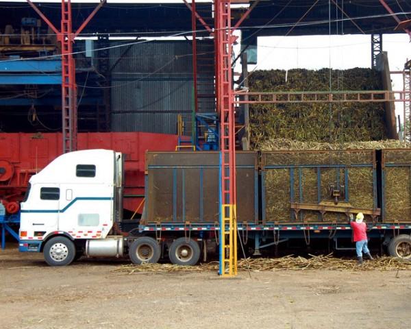 Fotosearch_k10767062_cane hauling truck