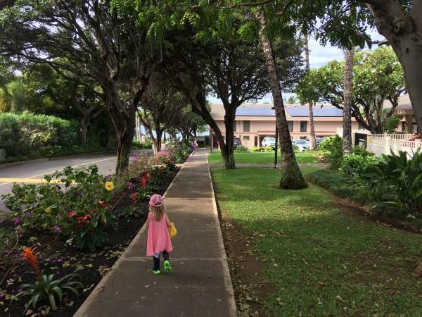 Kihei Akahi Grounds