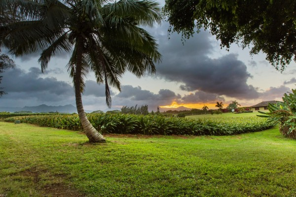 4469w n Waiakalua RD Kilauea-print-063-75-Twilights28-4200x2800-300dpi