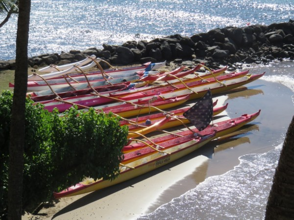 Canoes in Maalaea Harbor!