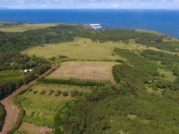 Nahele Rd. farm in Haiku Maui