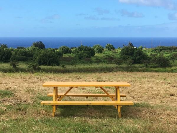Hawi Nani Picnic Table 20 acres for sale