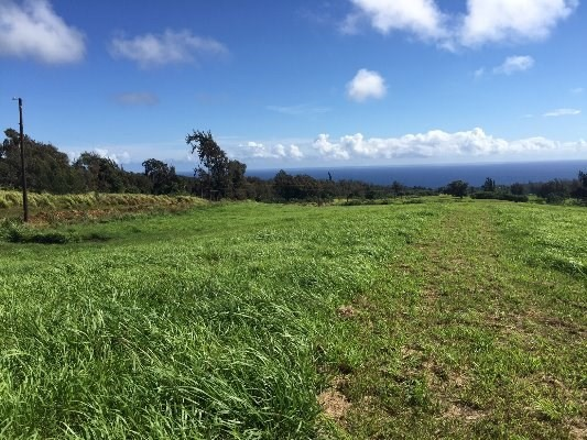 Ag zoned land for sale in Kapaau