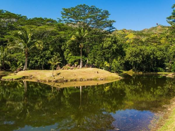 Pond_800x600_868327