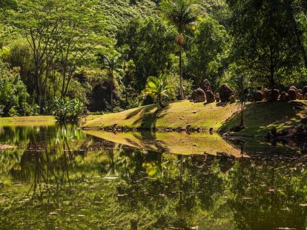 Pond_800x600_868331